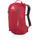 Gregory Salvo 18 Backpack tango red